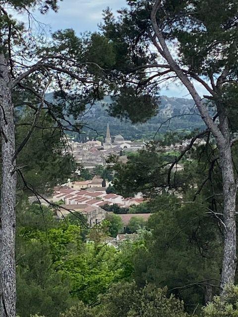 L'attribut alt de cette image est vide, son nom de fichier est Saint-Rémy-vu-de-la-petite-Crau.jpg.